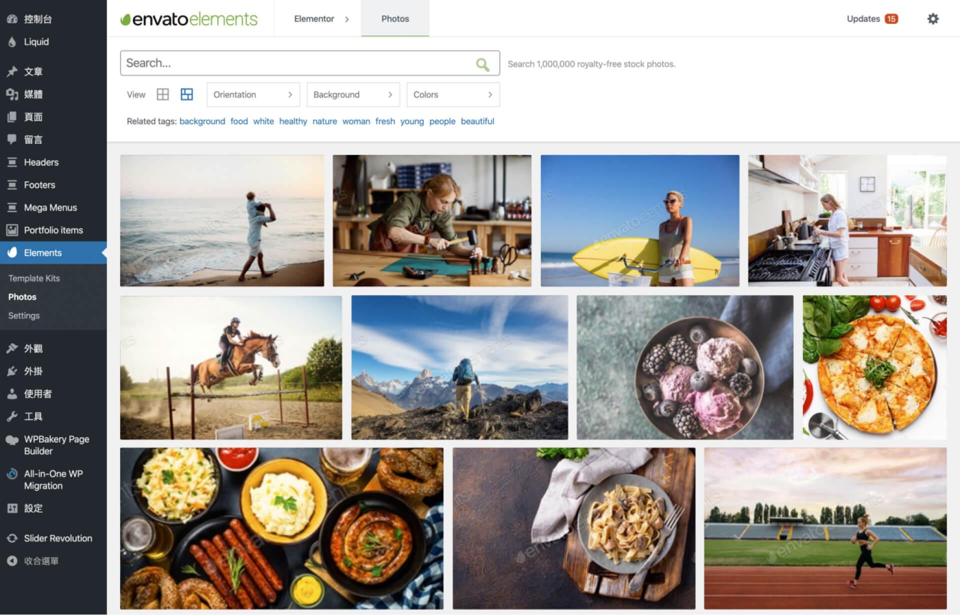 Envato Elements — Photos & Elementor Templates 外掛設定介面 — 圖庫瀏覽-IrvingLab 爾文實驗室